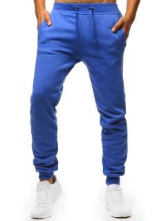 Püksid (Sinine) Alexo