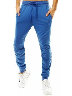 Püksid (Sinine) Nylson